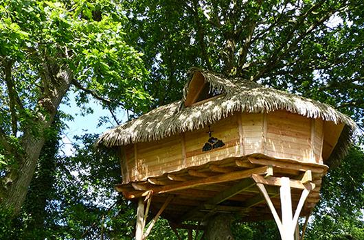 Week-end insolite dans une cabane dans les arbres en Bretagne